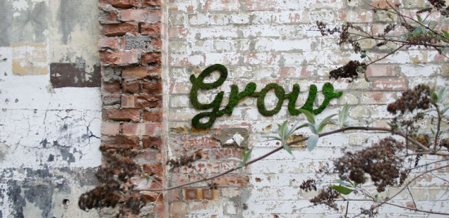 Moos Graffiti Grow von Anna garforth